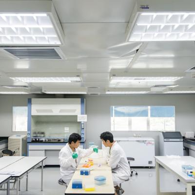 CHINA / Shenzhen BGI (Beijing Genomics Institute ) , Shenzhen Main Headquarter / Chemistry lab where experimental on genome is processed © Daniele Mattioli for D Repubblica Magazine